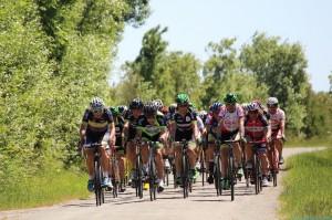 Courses cyclistes @ Départ salles 1 et 2