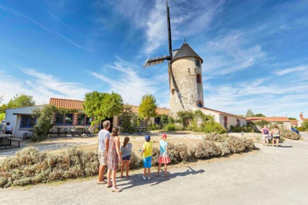 Moulin de Rairé (Alexandre Lamoureux)